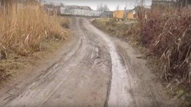 Жительница Корабельного района сняла «болотный блокбастер» | Корабелов.ИНФО