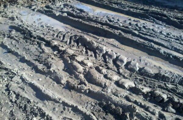 """Продолжение """"болотного блокбастера"""": в Балабановке можно утонуть в луже (Видео)   Корабелов.ИНФО"""