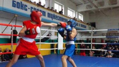 Боксеры-новички из Корабельного района достойно показали себя в боях за первенство   Корабелов.ИНФО image 1