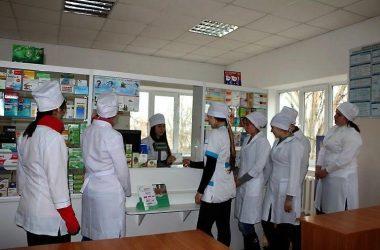 В  Николаеве теперь будут учить фармацевтов-бакалавров | Корабелов.ИНФО image 3