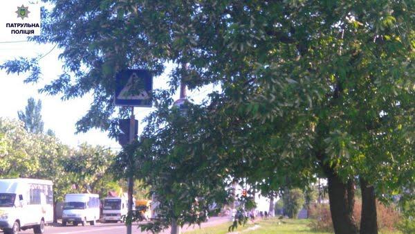 Патрульна поліція заявила про погану видимість дорожніх знаків та світлофорів через гілки дерев | Корабелов.ИНФО image 4