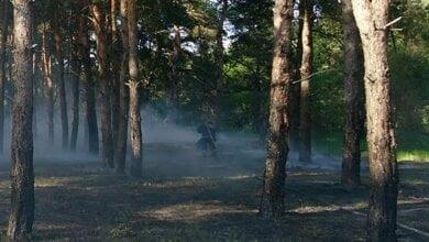 2 травня горіло Балабанівське урочище | Корабелов.ИНФО image 1