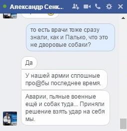 «Пусть все кричат, что дворняги», - опасаясь нападок «раша ТВ», мэр Сенкевич обманул целый город, «взяв удар на себя»   Корабелов.ИНФО image 3