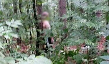 В Николаеве посреди белого дня трое мужчин избили и привязали к дереву таксиста, отобрав у него автомобиль | Корабелов.ИНФО
