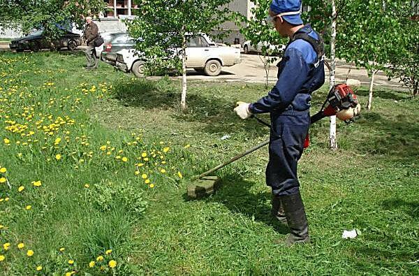 В Корабельном районе накосят травы на 230 тысяч гривен | Корабелов.ИНФО