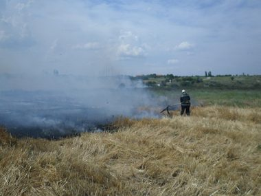 В Корабельном за сутки - более 5 пожаров на открытых территориях. Жители снова тушили траву на пустыре за школой № 48 (ВИДЕО) | Корабелов.ИНФО image 4