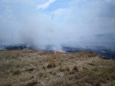 В Корабельном за сутки - более 5 пожаров на открытых территориях. Жители снова тушили траву на пустыре за школой № 48 (ВИДЕО) | Корабелов.ИНФО image 5