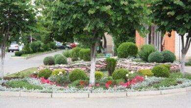 Photo of 14 июня в Корабельном районе подведут итоги конкурса благоустройства