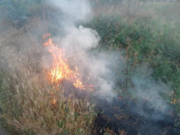 В Корабельном за сутки - более 5 пожаров на открытых территориях. Жители снова тушили траву на пустыре за школой № 48 (ВИДЕО) | Корабелов.ИНФО image 1
