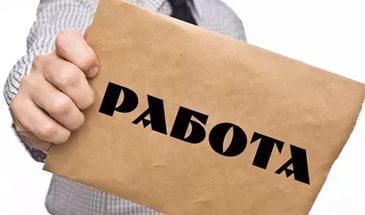 Хто шукає роботу? В Миколаєві більше 700 вакансій | Корабелов.ИНФО