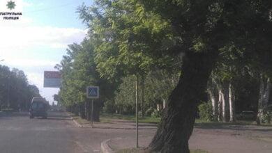 Photo of Посадових осіб «Миколаївзеленгоспу», що в Корабельному районі, притягнули до адміністративної відповідальності