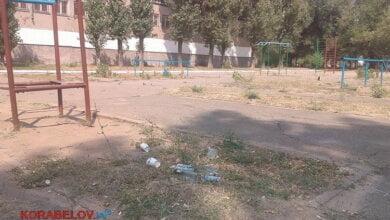 На школьном дворе в Корабельном - кучи бутылок из-под спиртного и опасные деревья   Корабелов.ИНФО image 1
