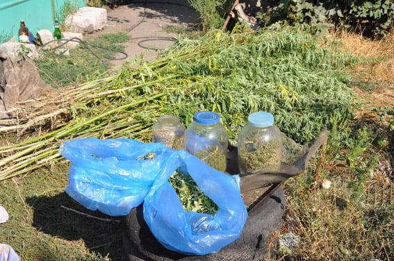 У жителя Корабельного района изъяли наркотики на 100 тысяч гривен   Корабелов.ИНФО image 3