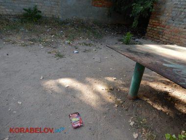 Состояние некоторых школьных дворов в Корабельном районе Николаева шокирует жителей (Видео)   Корабелов.ИНФО image 22