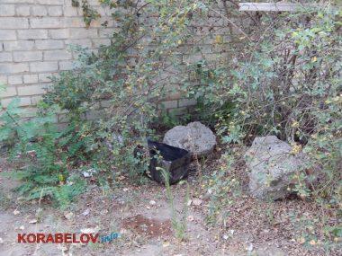 Состояние некоторых школьных дворов в Корабельном районе Николаева шокирует жителей (Видео)   Корабелов.ИНФО image 25