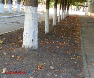 Состояние некоторых школьных дворов в Корабельном районе Николаева шокирует жителей (Видео)   Корабелов.ИНФО image 59