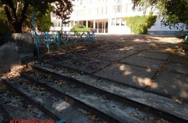 Состояние некоторых школьных дворов в Корабельном районе Николаева шокирует жителей (Видео)   Корабелов.ИНФО image 45