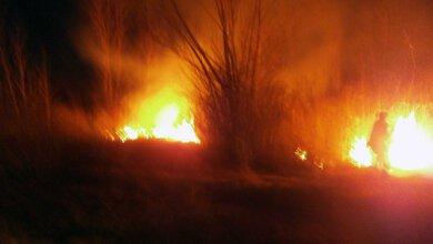 В Балабанівському урочищі  двічі за тиждень гасили пожежі | Корабелов.ИНФО