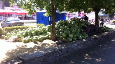 Photo of В центре Корабельного района «расположился беспредел» или «Как же красива эта арбузная клумба!»