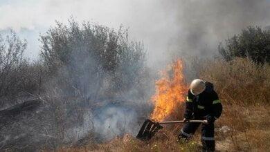 Горить трава і сміття, за добу на Миколаївщині - 20 пожеж на відкритих територіях | Корабелов.ИНФО