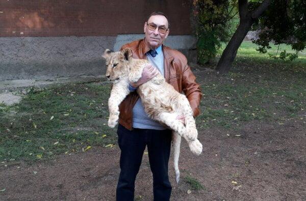 В Николаевском зоопарке пополнение: два южноафриканских львенка   Корабелов.ИНФО