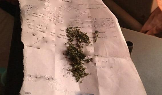 В доме по ул. Торговой накрыли крупную точку наркоторговли | Корабелов.ИНФО image 3