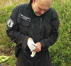 Мужчина нашел на свалке в Корабельном районе патроны для охотничьего ружья и гранаты без запалов | Корабелов.ИНФО image 3
