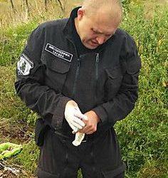 Мужчина нашел на свалке в Корабельном районе патроны для охотничьего ружья и гранаты без запалов   Корабелов.ИНФО image 3
