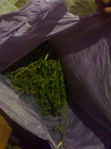 В Витовском районе расследовали кражу, а нашли 7 кг наркотиков у 30-летнего жителя | Корабелов.ИНФО image 4