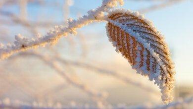 В Украине ожидается ухудшение погоды: возможны дожди с мокрым снегом и заморозки | Корабелов.ИНФО