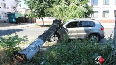 Мэрия вновь объявила штормовое предупреждение и просит николаевцев не ставить машины под деревьями   Корабелов.ИНФО