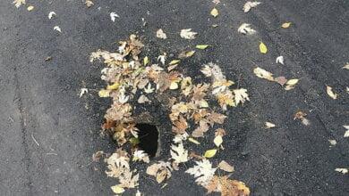 Житель Корабельного района возмутился ужасным ремонтом дороги по ул. Ольжича   Корабелов.ИНФО image 1
