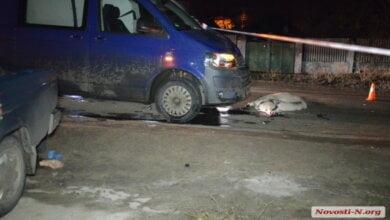 В Корабельном районе микроавтобус насмерть сбил бабушку, переходящую дорогу с коровой и козами | Корабелов.ИНФО image 1