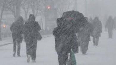 В Николаев идет зимнее похолодание: синоптики обещают морозы, снег и гололедицу | Корабелов.ИНФО