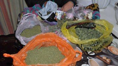 У двух жителей села в Витовском районе изъяли 9 кг  каннабиса | Корабелов.ИНФО image 1