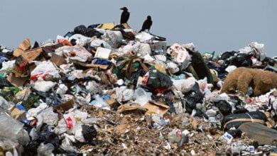 Горожан приглашают обсудить Требования к потенциальным инвесторам строительства мусороперерабатывающего завода   Корабелов.ИНФО