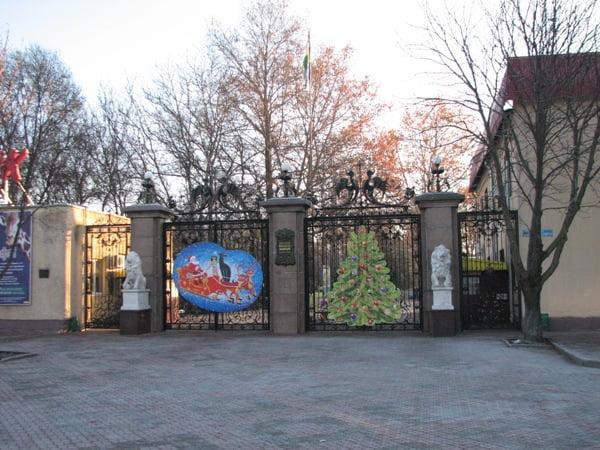 Photo of Николаевский зоопарк просит не выбрасывать новогодние елки, а привозить их животным