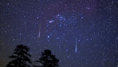 В ночь с 3 на 4 января украинцам обещают метеоритный дождь | Корабелов.ИНФО