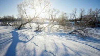 Завтра в Николаеве будет солнечная, морозная погода, - синоптики   Корабелов.ИНФО