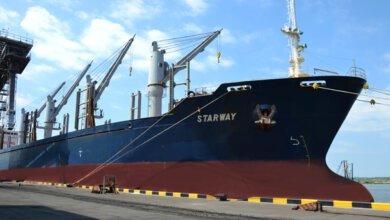 В январе «Ника-Тера» увеличила грузооборот почти в два раза | Корабелов.ИНФО