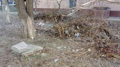 """""""Обидно"""": работники """"Водолея"""" развели вокруг здания бассейна мусорную свалку   Корабелов.ИНФО image 4"""
