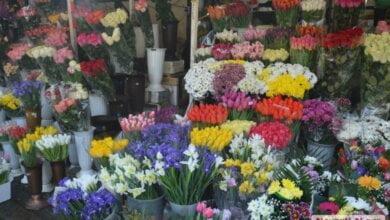 Цены на цветы в Николаеве взлетели «до небес»: женский праздник | Корабелов.ИНФО image 1