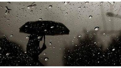 На выходных в Николаеве синоптики обещают дождливую и ветреную погоду | Корабелов.ИНФО