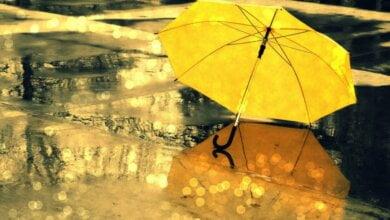 Photo of На этой неделе синоптики обещают в Николаеве теплую, но облачную погоду с дождями