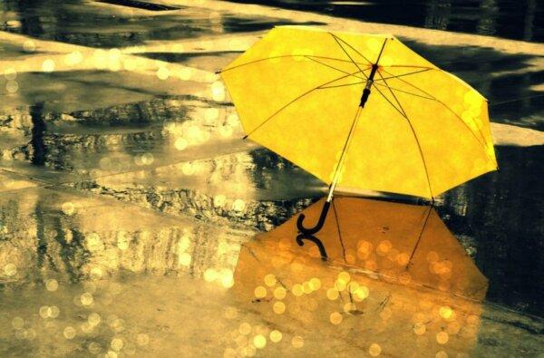 На этой неделе синоптики обещают в Николаеве теплую, но облачную погоду с дождями | Корабелов.ИНФО