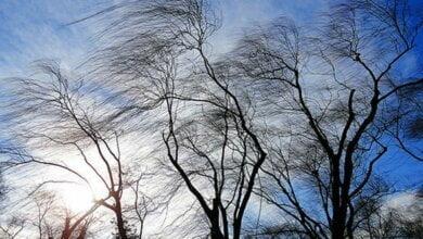 На вторник в Николаеве синоптики обещают до +19, но с сильным ветром. В следующие дни температура понизится | Корабелов.ИНФО