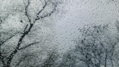 Погода в Николаеве на выходных будет прохладная и дождливая, - синоптики | Корабелов.ИНФО