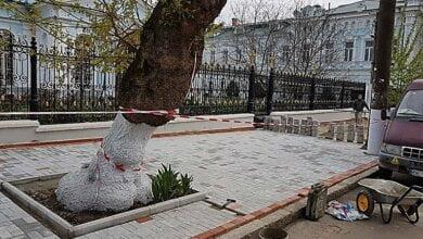 На укладку плитки на тротуаре в 70 метров мэрия Николаева заплатила четверть миллиона гривен | Корабелов.ИНФО image 1