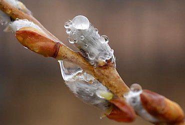 В Украину идет похолодание, которое продержится неделю | Корабелов.ИНФО