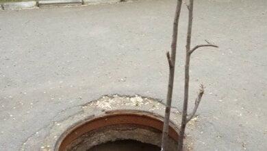В открытый люк на территории школы в Корабельном районе провалилась коляска с ребенком | Корабелов.ИНФО image 3